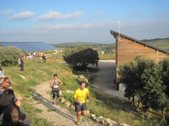 Trail Mas Dieu le 07 11 15  (3)